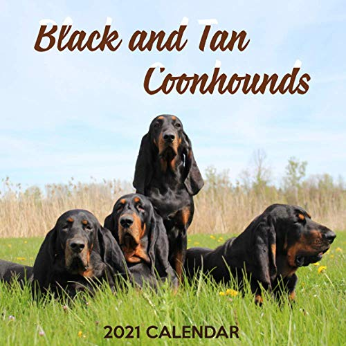 Black and Tan Coonhounds 2021 Calendar: Perfect for Notes and Planning, Monthly and Weekly