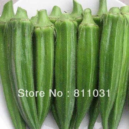 20pcs vente chaude / 1 paquet de graines de gombo jardin à la maison DIY livraison gratuite