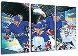 Mannheim Eishockey, Fan Artikel Leinwandbild 3Teiler