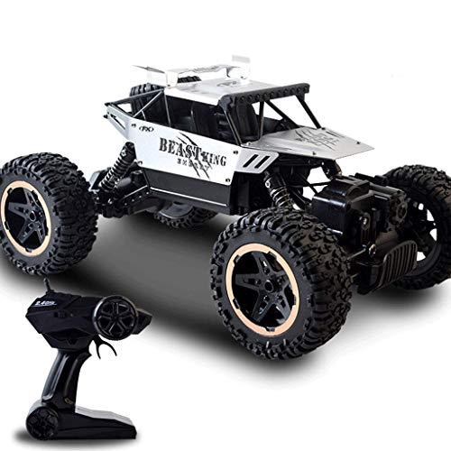 Vehículo motorizado RC Coche 1:18 4WD de Alta Velocidad de