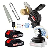 BIERDORF Mini Chainsaw Cordless 2 Batteries, 4-Inch Portable 2000 x 5 mAh Handheld Chainsaw, Battery Operated Chainsaw for Trees, Branch Woods