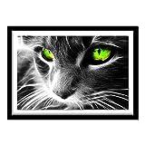 Gree eye cat 5D diy diamante pintura pared pegatina diamante punto de cruz costura bordado diamante bordado40*50