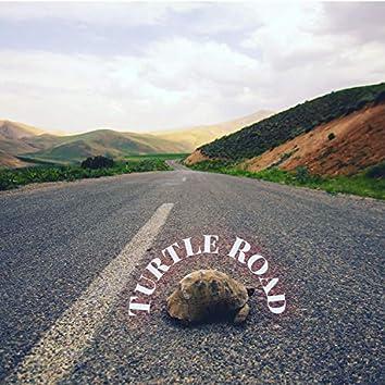 Turtle Road