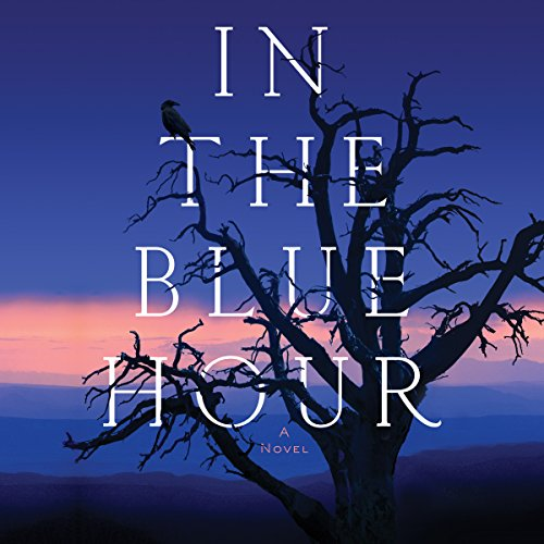 In the Blue Hour audiobook cover art