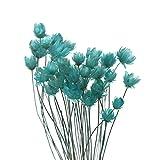 Zhualemon mnvxcbxv 30pcs Mini Daisy Floral Ramos de flores secas, DIY Artesanía Pequeña Estrella Flor Plantas Naturales Decoración del Hogar (Azul Lago