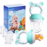 Best Baby Feeders - Baby Fruit Food Feeder Pacifier - Fresh Food Review
