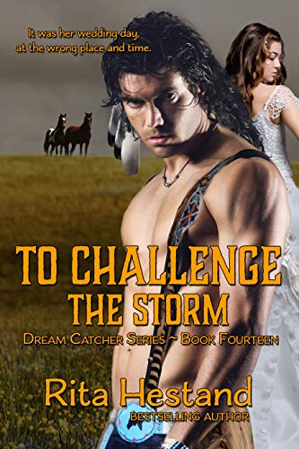 To Challenge the Storm (Dream Catcher Series Book 14)