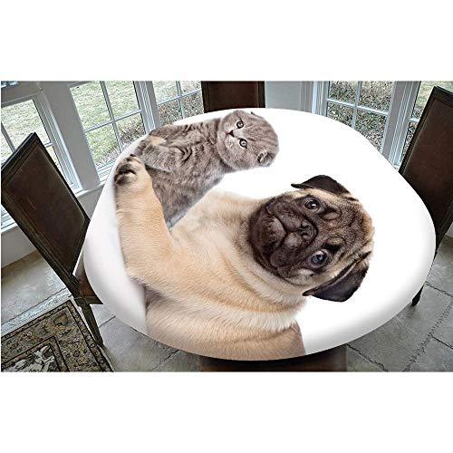 Mantel de mesa resistente a las manchas, con bordes elásticos, lindas mascotas, gatitos y cachorros, diseño escocés, plegable, para mesas ovaladas/Olbong de 122 x 172 cm, para comedor y Kitc