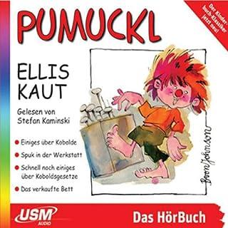 Einiges über Kobolde / Spuk in der Werkstatt audiobook cover art