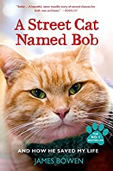 Image: A Street Cat Named Bob: And How He Saved My Life, by James Bowen (Author). Publisher: Thomas Dunne Books (July 30, 2013)