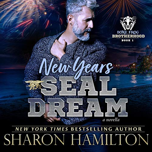New Years SEAL Dream audiobook cover art
