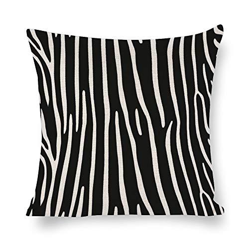 N/ A Animal Skins - Funda de cojín cuadrada para sofá, diseño de cebra, color negro