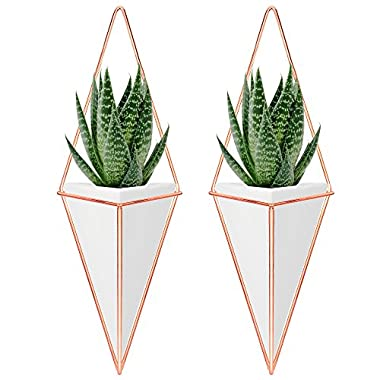 Nellam Ceramic Planter Set - 2 Pcs Modern Geometric Hanging Wall Pots - Copper Framed, Mounted Decorative Vases & Container for Indoor Plants & Succulents - for Flowers, Herbs, Vegetables