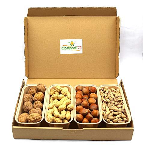 Jumbo-Nüsse-Box 1kg gemischte Nüsse Walnüsse, Erdnüsse, Haselnüsse mit Schale und gesalzene, geröstete Pistazien - Obstprofi24