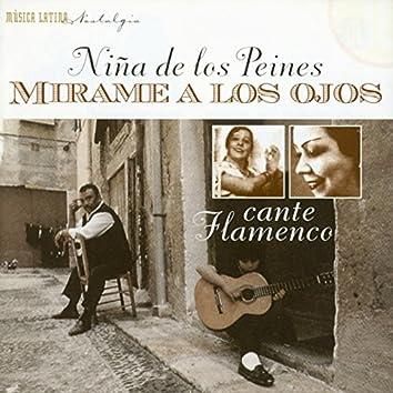 Mirame a Los Ojos - Cante Flamenco