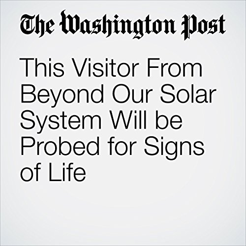 This Visitor From Beyond Our Solar System Will be Probed for Signs of Life copertina