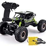 YAMMY 1:18 4x4 RC Drive Juguete de Control Remoto High Horsepower Monster Truck High Speed ​​RC Buggy Cars Off Road Vehicle Remote Control (Coche Inteligente)