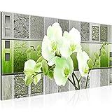 Bilder Blumen Orchidee Wandbild Vlies - Leinwand Bild XXL Format Wandbilder Wohnzimmer Wohnung Deko Kunstdrucke Grün 1 Teilig - MADE IN GERMANY - Fertig zum Aufhängen 204612b