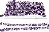 Trimming Shop Violet Ruban avec Transparent Strass - Chaîne pour Garniture et Embellissement - Cordon Faux...