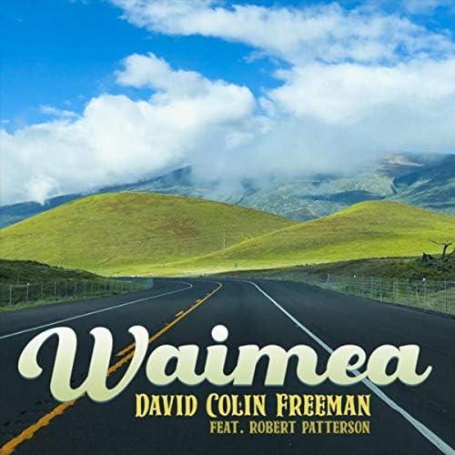 David Colin Freeman feat. Robert Patterson