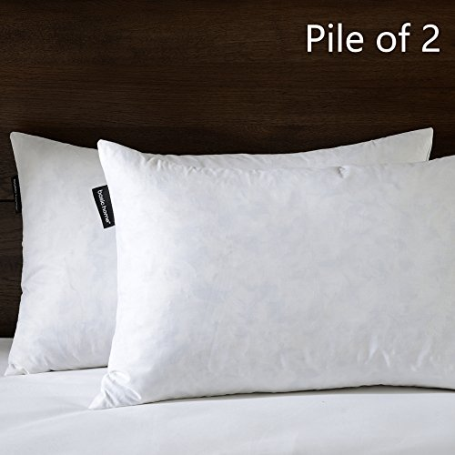 pillow insert 24x16 - 4