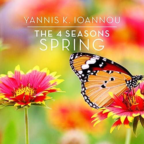 Yannis K. Ioannou