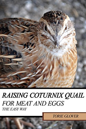 Raising Coturnix Quail for Meat and Eggs: the easy way by [Torie Glover]