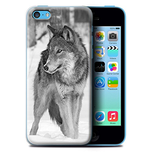 Hülle Für Apple iPhone 5C Zoo-Tiere Wolf Design Transparent Ultra Dünn Klar Hart Schutz Handyhülle Case