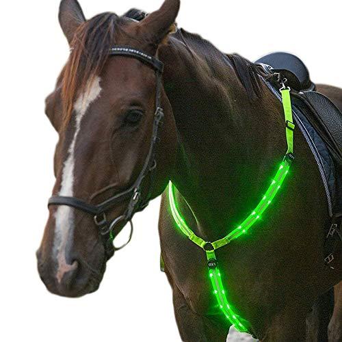 Hmpet LED Pferdegeschirr, Brustgurt Pferdegeschirr Mit LED Licht Punktlicht Pferdegeschirr Pferde Brustgurt Für Dunkle Umgebung Outdoor Und Pferdesport,Grün