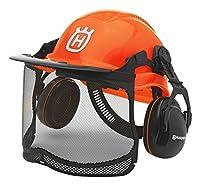 ハスクバーナ フォレストヘルメット(ヤシの木)