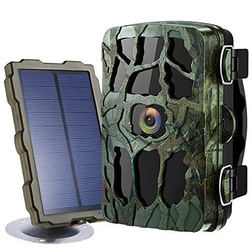 Braveking1 Cámara de Caza 4K HD 20MP 1080P Trail Game Camera Visión Nocturna 98ft/30M Espera 18 Meses 0.2s Velocidad Disparo IP66 Impermeable Cámara de Animal Invisible con Panel Solar y 32GB Tarjeta