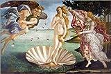 Poster 91 x 61 cm: Die Geburt der Venus von Sandro