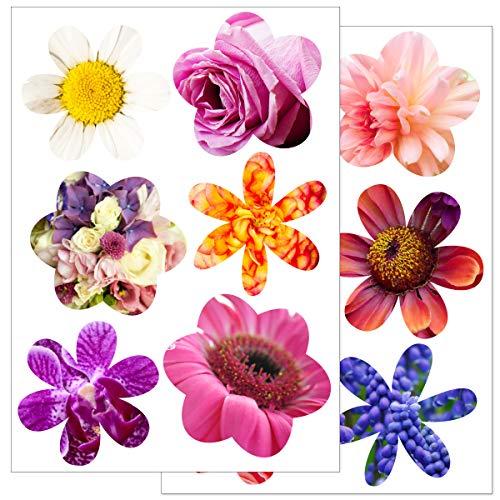 WANDKINGS Fensteraufkleber, Farbenfrohe Blumen, 2 Bögen in DIN A4, Wiederverwendbare Fenster Aufkleber