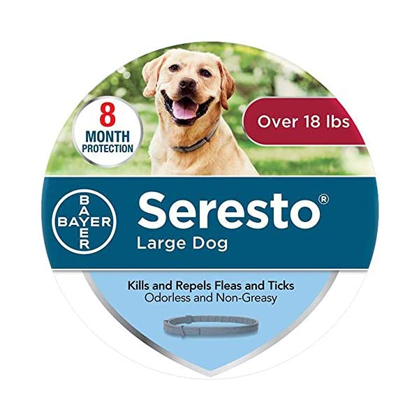 BLOOMWIN Flea and Tick Collar Prevention Control for Dogs, 8-Month Seresto Tick and Flea Collar for Dogs