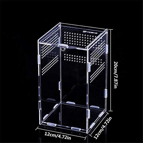 aheadad Terrarien für Reptilien Amphibien Terrarium Transportbox Reptilienzuchtbox Insektenfütterungsbox für Schlangenspinnenechse