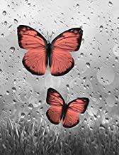Coral Gray Butterflies, Raindrops, Decorative Bathroom Bedroom Matted 5x7, 8x10, 11x14 Home Decor Picture