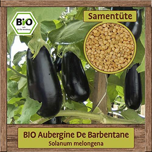 BIO Aubergine Samen Sorte De Barbentane (Solanum melongena) Gemüsesamen Eierfrucht Saatgut
