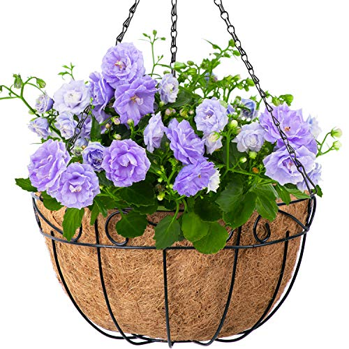 4 Pack Hanging Plant Baskets with Coco Coir Liner 14 Inch Round Wire Planter Holder Metal with Chain Porch Decor Flower Pots Hanger Garden Decoration Indoor Outdoor Watering Hanging Baskets