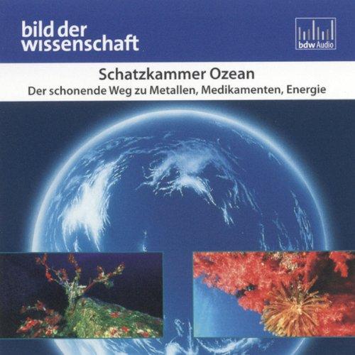 Schatzkammer Ozean (Bild der Wissenschaft) Titelbild