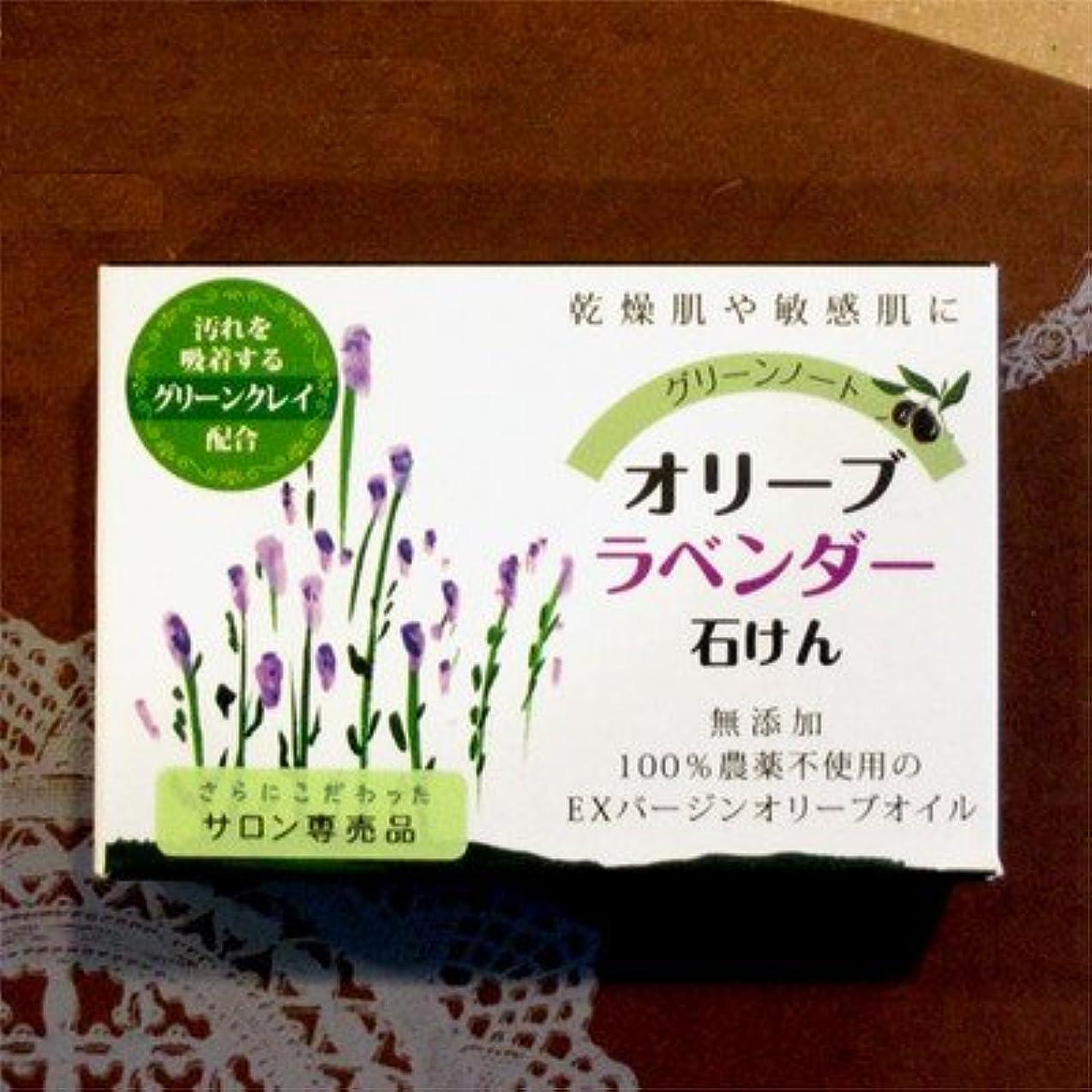 磁気入り口繊細グリーンノート オーガニック ハーブ ソープ 無農薬 無添加 オリーブ ラベンダー せ鹸 100g