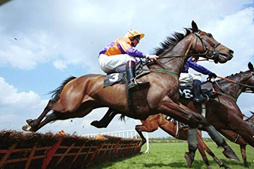 Each way betting horse racing systems that work english football betting
