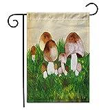 12.5 'x 18' Bandera de jardín Hongos comestibles en una hierba Aguada Papel Trabajo hecho a mano Álb...