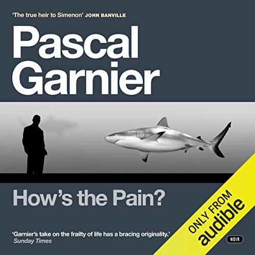 How's the Pain? audiobook cover art