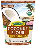 Let's Do...Organic Coconut Flour, 16 Ounce Pouches (Pack of 6)