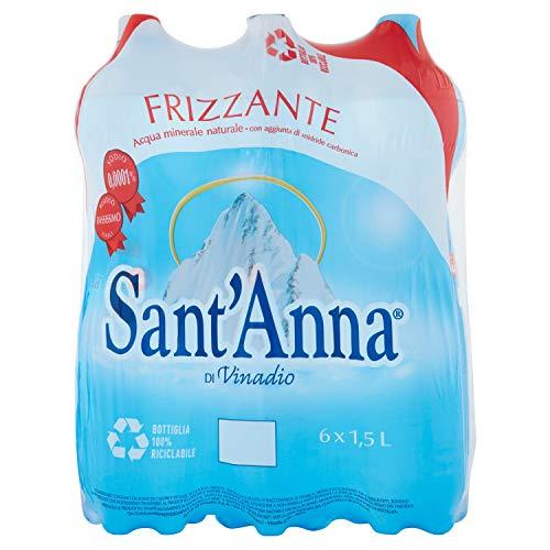 イデアインターナショナル サンタンナ イタリアアルプス天然水 炭酸水 ペット 1500ml×本 0005