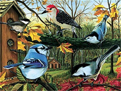 XDXART DIY pintura al óleo por número, kit para niños adultos principiantes 16 x 20 pulgadas – pájaro en el árbol dibujo con pincel decoración de Navidad regalos (sin marco)