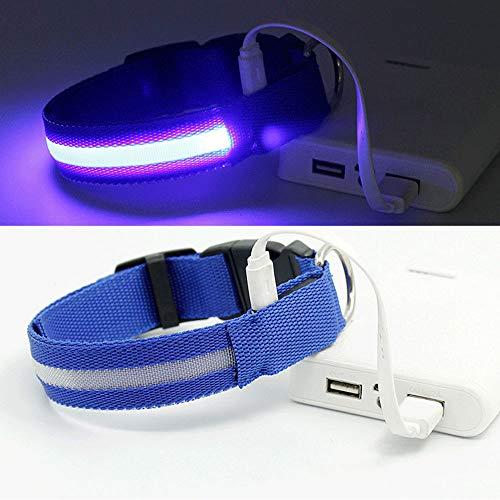 HN LED Collier De Chien De Charge USB Collier De Chien De Charge Teddy Lumineux Fournitures pour Animaux De Compagnie S: 2.5 * 40Cmm: 2.5 * 48Cml: 2.5 * 56Cm,Blue,S