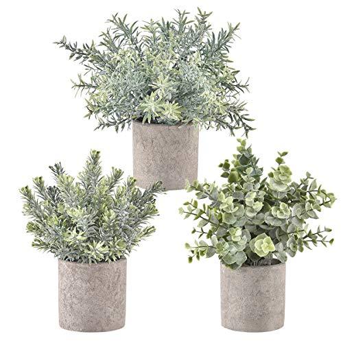 Krelymics 3 Stück Künstliche Pflanzen Mini Kunstpflanzen Künstliche Eukalyptus Pflanzen mit Töpfen für Home Schreibtisch Küche Badezimmer Garden Deko (Grün, 3 Stück)