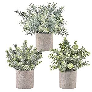 Hamore Artificial Eucalyptus Plants Green Rosemary Plants Mini Potted Artificial Potted Plants and Flowers Artificial Rosemary Plants in Gray Pot for Home Office Desk Shower Room Decor, Set of 3