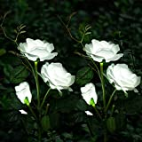 Solar Garden Lights Christmas Yard Decorations Solar Rose Flower Lights with 6 Rose Flowers Waterproof for Garden Patio Yard Pathway Decoration (2 Pack White)